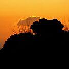 Lava Rocks Sillouette by Ellen Cotton