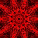 Holiday Red Kaleidoscope by Marie Sharp