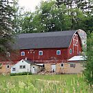 another cool barn! by Lynne Prestebak
