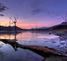 Mauve Morning by Mel Sinclair