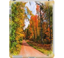 Fall in Wisconsin iPad Case/Skin