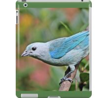 Blue Tanager iPad Case/Skin