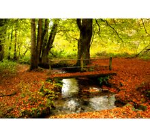 Autumn Moods Photographic Print