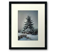 Majestic Winter Framed Print