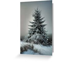 Majestic Winter Greeting Card