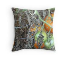 Tomato Harvest Throw Pillow