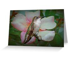 Hummingbird in the Rose Garden Greeting Card