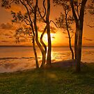 sunset - st georges basin australia by doug riley