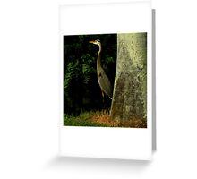Avian Beauty ~ Part Four Greeting Card