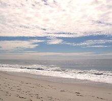 The Beach - Fire Island, NY by Angela Rutherford