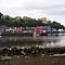 Tobermory, low tide by Gary Eason
