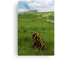 From Nature Canvas Print