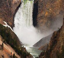 Grand Canyon of Yellowstone by Wayson Wight