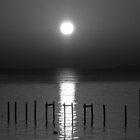 Moon Rise by JGetsinger