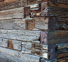 Weathered Lines, Barn, Ruby Valley, Nevada by Alan C Williams