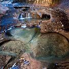 Glowing Stone Pools, Zion Subway, Utah by Alan C Williams