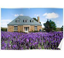 Daylesford Cottage - Victoria - Australia Poster