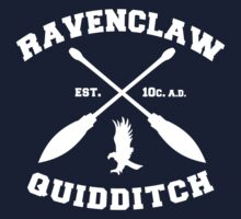 Ravenclaw Quidditch by Alexandra Grant