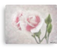 Pink Centered Carnations 3 - Remembrance Canvas Print