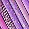 Color me Purple ***Invite Only****