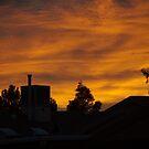 Good Morning Sierra Vista by thruHislens .