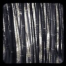 bamboo, ttv style by ozzzywoman