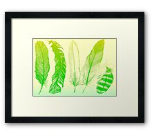 Lime Feathers Framed Print
