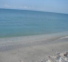 Beach at Captive Island by Lorraine Armstrong