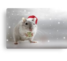 Here's a little Christmas gift for you xxx Canvas Print