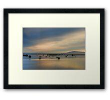 Santa Clara River, Tree Framed Print