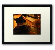 Who Chases Who? Framed Print