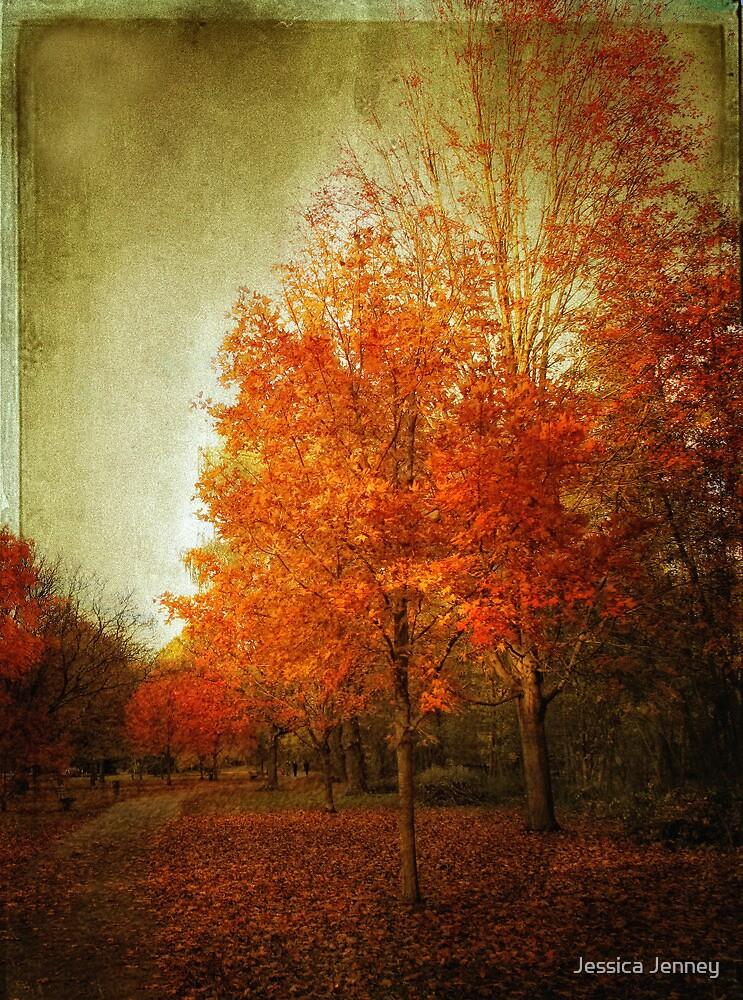 Autumn Aglow by Jessica Jenney