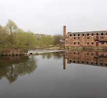 Thwaite Mill on the Aire & Calder Navigation by Terry Senior