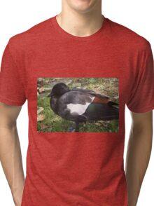New Zealand Paradise Duck Tri-blend T-Shirt