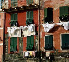 Cinque Terre Windows by Erin Kanoa