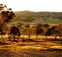 The Land Down Under by Faith Inman