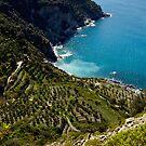 Corniglia Cinque Terre by Erin Kanoa