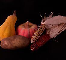 Winter Harvest by Jeffrey  Sinnock
