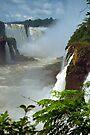 Iguazu Falls, Argentina by Michael  Moss
