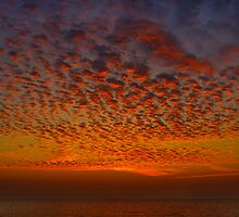 Florida Sky II by deahna