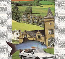 The house, the car, the fish (into the sunset) by Soxy Fleming