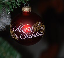Merry Christmas by Vonnie Murfin