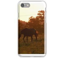 Walk on the wild side iPhone Case/Skin