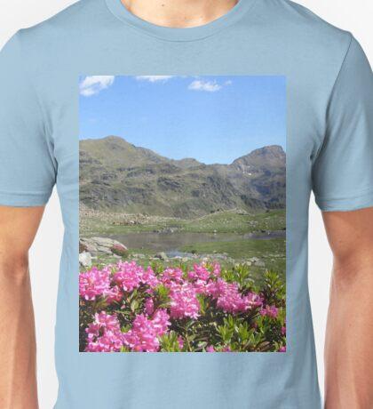 an awe-inspiring Andorra landscape Unisex T-Shirt