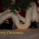 Santa's Shoes by artsthrufotos