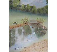 Duck Pond at Wollongong Uni Photographic Print