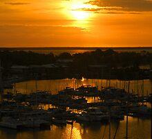 Golden Vista by Lynette Higgs