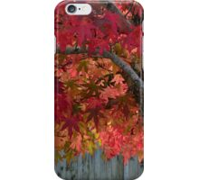 Tree of flames iPhone Case/Skin