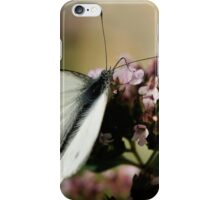 A sip of nectar iPhone Case/Skin