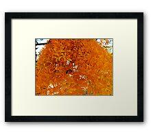 """Christmas Tree"" WA style Framed Print"